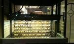 انواع مدل گاوصندوق