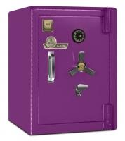 گاوصندوق کاوه ضد سرقت 550S